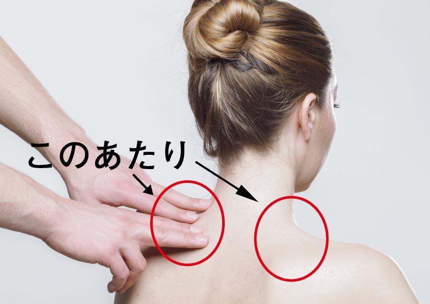 首と肩のつけ根