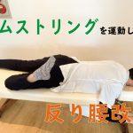 ハムストリング運動7